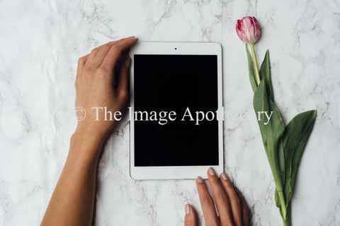 TheImageApothecary-6019 - Stock Photography by The Image Apothecary