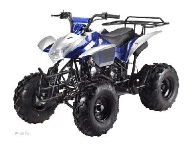 Big 110cc Kids Sports Quad