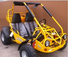 DIRT DEMON 150CC GO KARTS