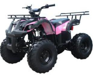 Husky 125cc Youth Utility ATV