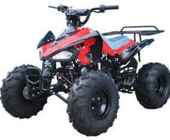 Nitro 125cc Youth Sports Quad