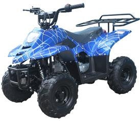 SMALL 110cc KIDS ATV with Rear Rack