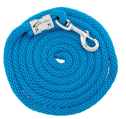 Basic Lead Ropes