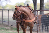 "5/8"" Leather Browband Headstall With Kansas Silver Buckles"