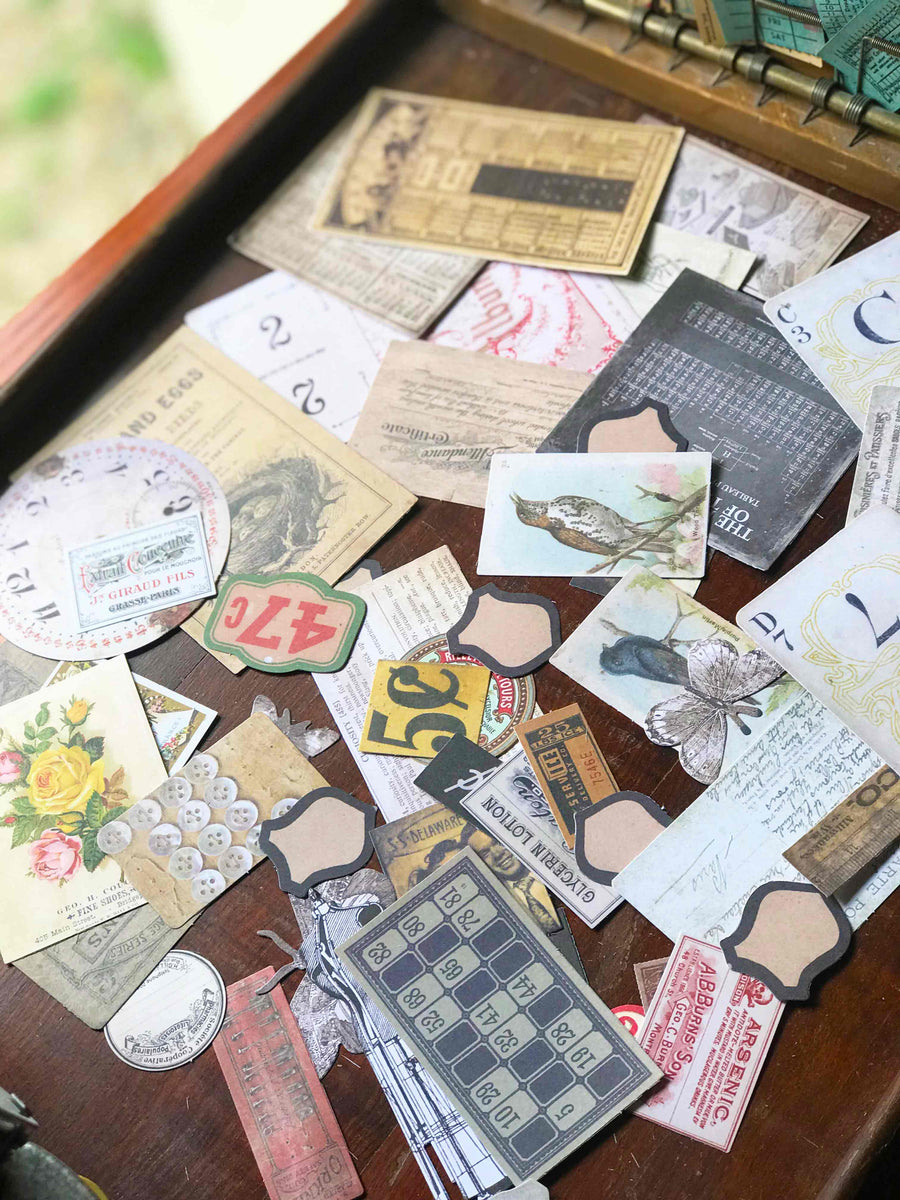 Tim Holtz® Idea-ology Thrift Shop Die Cuts TH93114 from micmoc.com
