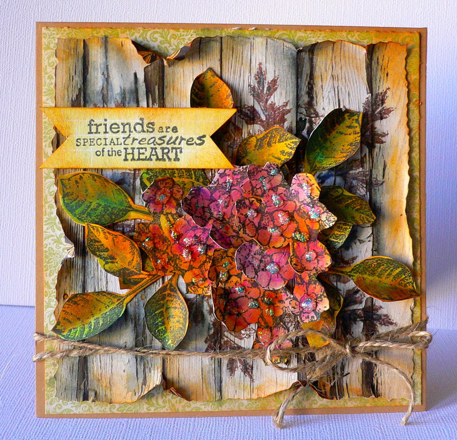 Kaisercraft  Clear Stamps - Botanica CS223 from micmoc.com at Mic Moc Curated Emporium