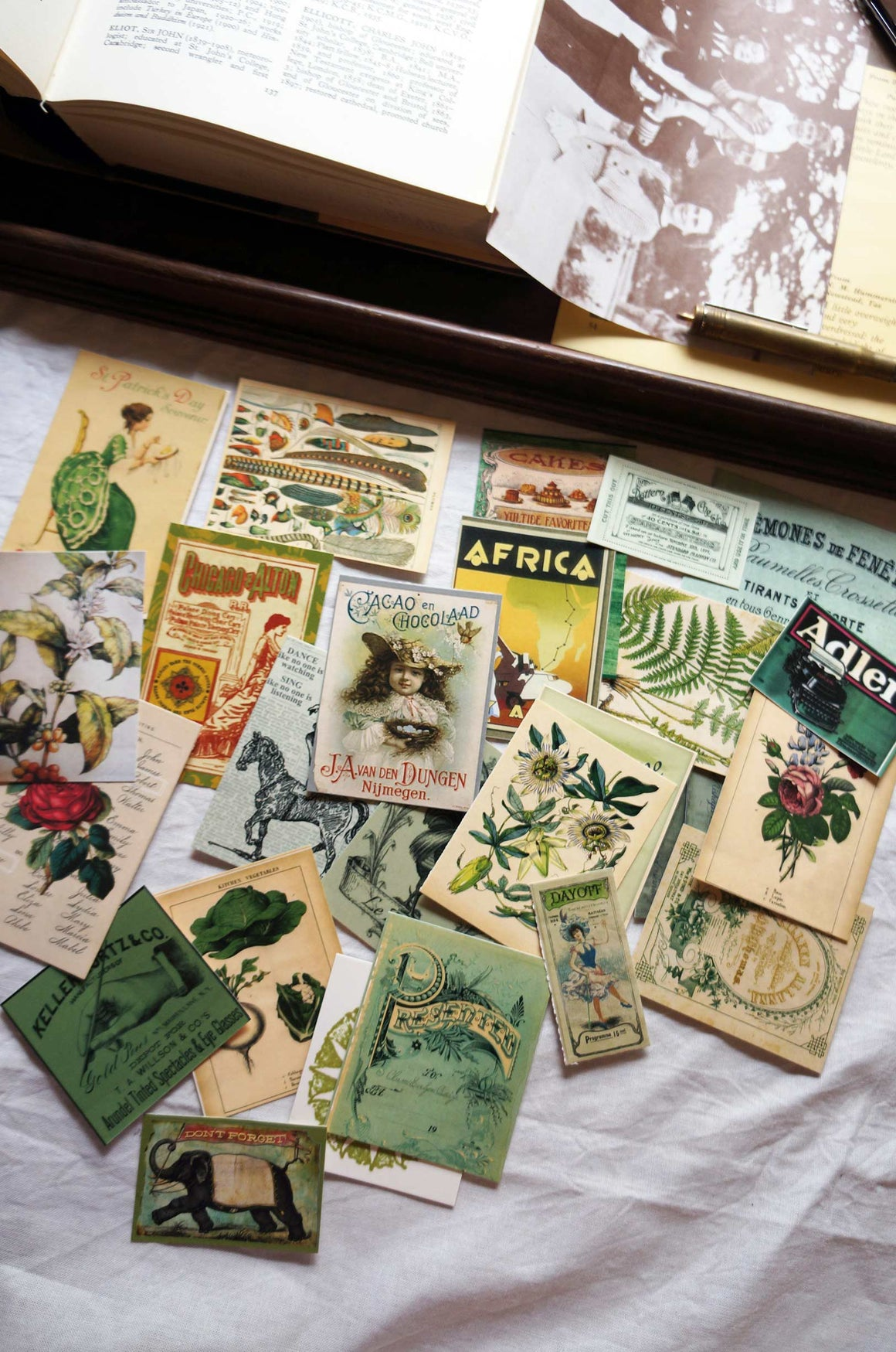 Vintage Ephemera - 'Salvage' Green (7 Gypsies) - Pack of 25 by micmoc.com at Mic Moc