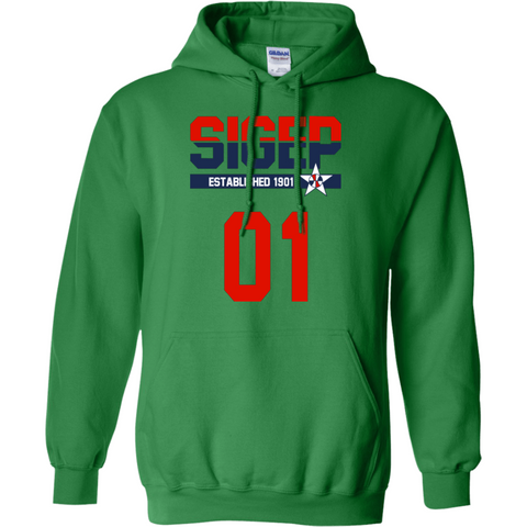 Sigma Phi Epsilon Officially Licensed (Assorted Colors) Hoodie - Almighty Jerseys Jersey Customs Greek Life