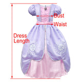Sofia Princess Fancy Party Dress