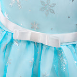 Pretty Princess Snow Queen Dress