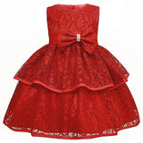 Little Girl Lace Tutu Dress