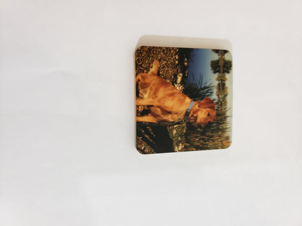 Wood Photo Magnet Personalized