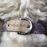Leather Dog Collar - Vaughan Springs (now in 5 sizes)