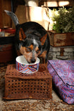 Ceramic Dog Bowl - Digging For Truffles