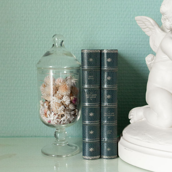 Set of Antique Blue and Gold French Books
