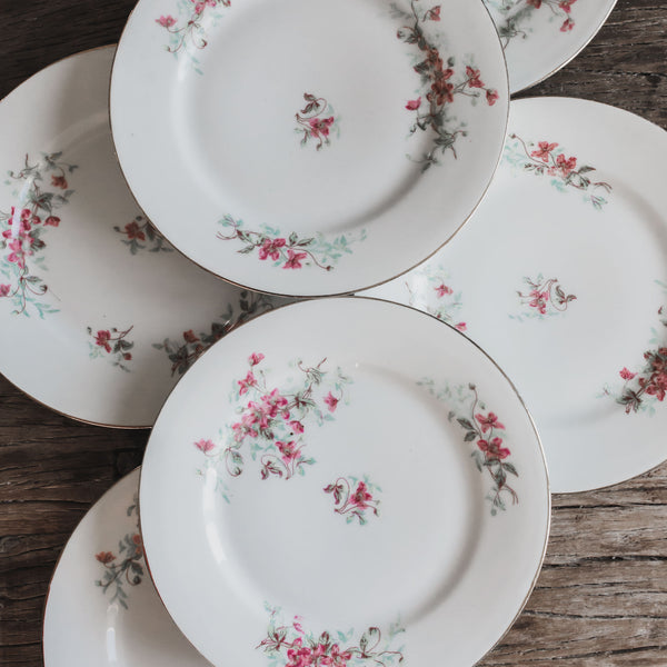 Set of 6 French Floral Plates