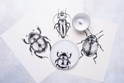 hand-drawn plates & cups