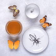 Bee Cup & Saucer - schmoo.shop