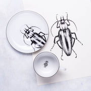Striped Beetle Cup & Saucer - schmoo.shop