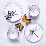 Dragonfly and Beetle Cup & Saucer Set - schmoo.shop