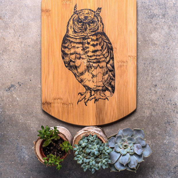Hawk-Owl Decorative Board - schmoo.shop