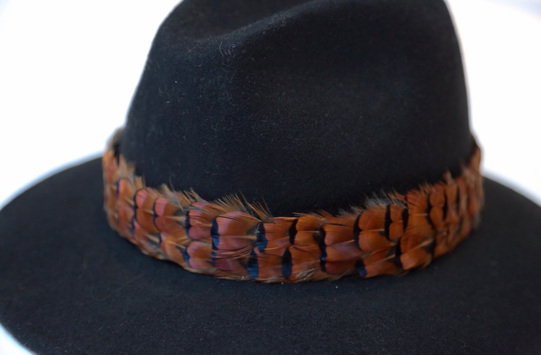 Black Fedora With Pheasant Feather Band