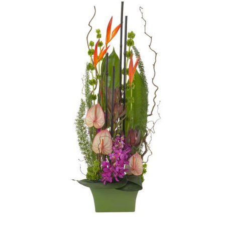 Calypso - MIXED ARRANGEMENT - (ceramic base)
