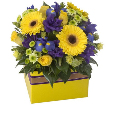 Bright Delight - MIXED ARRANGEMENT - (box)