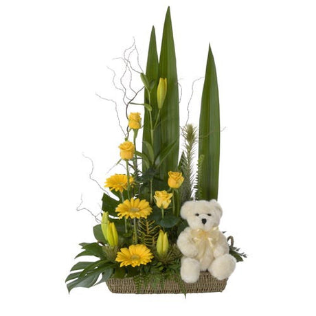 Teddy's Gift - MIXED ARRANGEMENT - (basket & teddy)