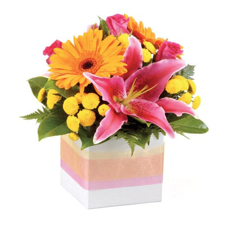 Pixie - SMALL BOUQUET - (mini-box)
