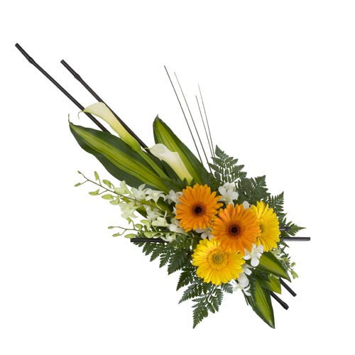 Sympathy Spray - ARRANGEMENT