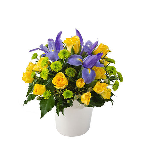 Andy - Bright Arrangement in a Ceramic Container