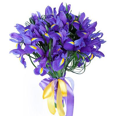 Vincent Van Gogh Irises Bouquet - 20 stems
