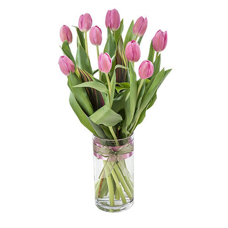 Lara - Tulips in a Glass Vase