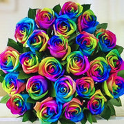 RAINBOW ROSES - Click-&-Collect MOTHERS DAY