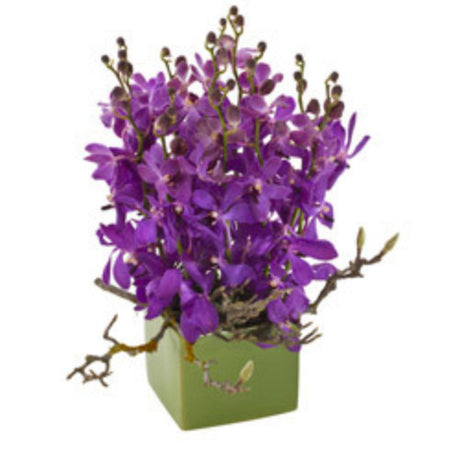 Maya - ORCHID ARRANGEMENT - (ceramic box)
