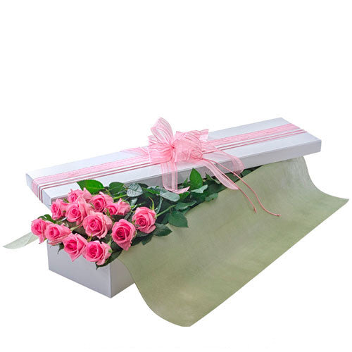 Seduction - 12 PINK ROSES - (Valentine Boxed Roses)