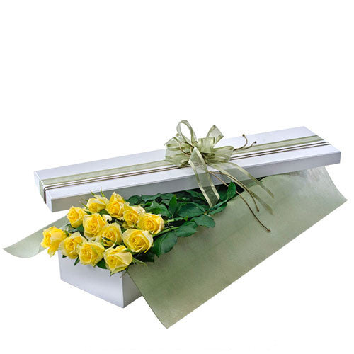 Seduction - 12 YELLOW ROSES - (Valentine Boxed Roses)
