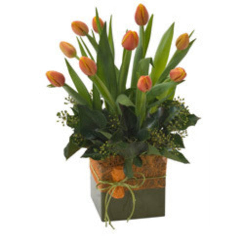 Glenda - TULIPS - (mini-box arrangement)