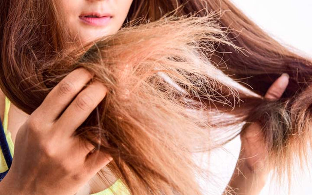 Dry Hair Woes: Why & How You Can Fix It