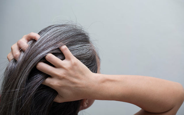 White Hair: What, Why & How To Reverse Premature Greying?