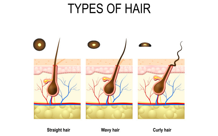 Types of hair that is straight, wavy and curly
