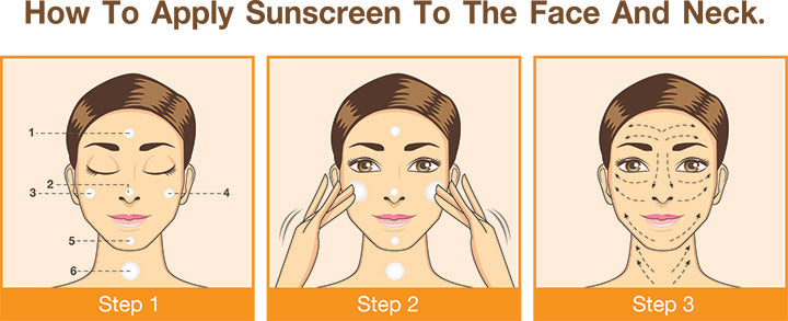 step to apply sunscreen to face and neck