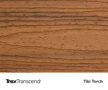 TrexTranscend colour Tiki Torch