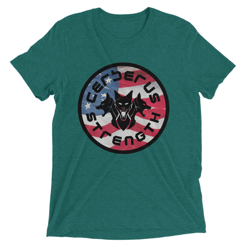 Image of Men's USA T