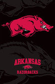 Arkansas Razorbacks Posters