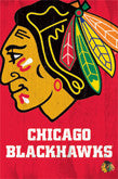 Chicago Blackhawks Team Logo Items