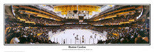 Hockey Arena Posters