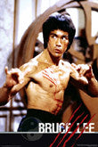 Martial Arts Posters (Bruce Lee)