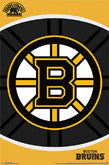 Boston Bruins Team Logo Items